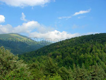 "Nature of Armenia. ""Dilijan"" National park"